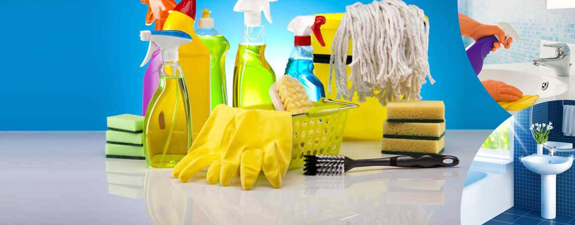 HOUSEHOLD & DISINFECTANTS